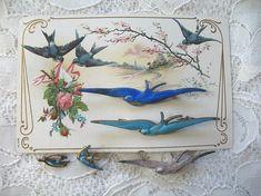 Victorian Swallow pins