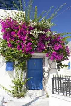 The gorgeous ornamental bougainvillea turn this into a home coastal paradise.   - HouseBeautiful.com