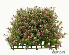 Panel Fruto Silvestre rosa 11873  $20295    25 cms alto x 25 cms de ancho