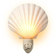 Natural Seashell Night Light - Beach Decor - By Tumbler Home - Natural Handmade Night Light - featuring a gorgeous white clam shell straight from the beach. A fabulous way to illuminate any room with cozy beach style. Place throughout the home to provide gentle light to guide you and your loved ones safely in the night. Excellent for use as mood lighting! Tr...