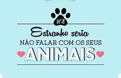 ALTAS CONVERSAS LÁ EM CASA ❤️❤️❤️ #filhote  #cachorro  #amoanimais  #filhode4patas  #petmeupet  #gato  #amogato