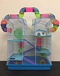 Hamster Starter Kit Hamster Habitat Syrian Hamster Gerbil
