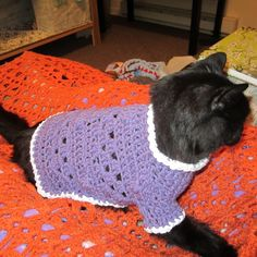dog crocheted sweaters Ravelry: Kitty Cat or Small Dog Crochet Sweater pattern by Starling Ravelry: Kitty Cat or Small Dog Crochet Sweater pattern by Starli Dog Sweater Pattern, Crochet Dog Sweater, Dog Crochet, Crotchet, Large Dog Sweaters, Cat Sweaters, Small Pug, Large Dog Clothes, Animal Sweater