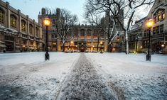 University of Chicago, the beautiful college we donated money to help build Beautiful Buildings, Beautiful Places, Beautiful Homes, Chicago School, Chicago Trip, Chicago Photos, Biology College, University Architecture, Chicago University