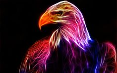 colorful fractal eagle by ~minimoo64