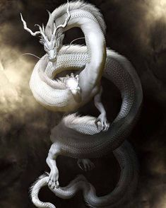 This is for my eastern Dragon lovers I found this beautiful image of Pai Lung on. Mythical Creatures Art, Magical Creatures, Dark Fantasy Art, Fantasy Artwork, Dragon Artwork, Dragon Drawings, Dragon Pictures, Dragon Tattoo Designs, White Dragon