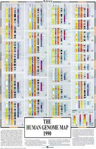 The human genome map as it stood in 1990.