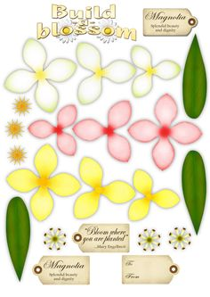 photo Magnolia.jpg - ideas for coloring/shading flowers cut with cricut