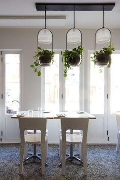 Trío #Ideas para #decorar con #plantas #home_plants