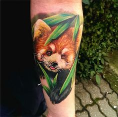 They are small, adorable and cute. The red panda is simply a sweet little animal looking awesome in ink. Tattoo Designs, Half Sleeve Tattoos Designs, Red Panda Tattoo, Panda Tattoos, Great Tattoos, Beautiful Tattoos, Amazing Tattoos, Animals Tattoo, Tattoo Animal