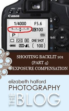 Part 4 in a 6 part series on shooting backlit.