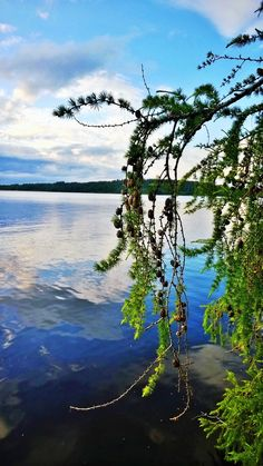 Aulanko, Tekosaari Nature Reserve, Hotel Spa, Finland, Seasons, River, Statue, Activities, Park, Pictures