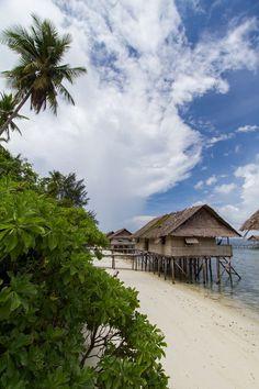 Kri Island | Raja Ampat, Irian Jaya, Indonesia