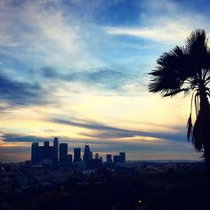 THINK BLUE: My first sunset in California and my first ride in a police car  #laskyline #losangeles #la #california #skyline #view #dodgerstadium #travel #inspiration #destination #travellife #backpacker #globetrotter #wanderlust #fernweh #travelinspiration #explorer #discover #discoverla #adventure #passionpassport #holiday #sky #usa #travelgram #igtravel #instatravel #exploring #sunset #downtownla by travelfreckle