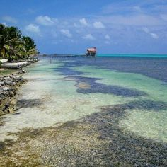 Wander near or travel far, wherever you go, there you are. Get away from it all in Belize. #Belize #Travel #wanderlust #wanderlustwednesday #island #paradise #Caribbean #caribbeanislands #sea #beach #AmbergrisCaye #vacation #escapetheordinary #tropical #barrierreef #ecotourism #overthewatercabana #belizevactions #Belizetravelagent #sabrewingtravel