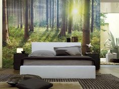 Sunset in the Forest Wall Mural House Decoration Items, Diy Home Decor, Bedroom Wall, Bedroom Decor, Inspiration Wand, Interior Exterior, Interior Design Inspiration, Design Ideas, Wall Murals