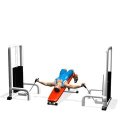 DECLINE BENCH CABLE FLYES INVOLVED MUSCLES DURING THE TRAINING CHEST