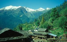 A paradise for backpackers, nature lovers and trekkers alike, Tosh is a village that lies in the enchanted Parvati Valley, Himachal Pradesh situated at a height of 7874 ft above sea-level. To enter the village, one has to walk over a wooden bridge. Rest Of The World, Incredible India, Travel Destinations, Beautiful Places, Places To Visit, The Incredibles, Tours, Explore, Adventure