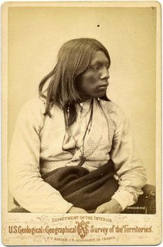 Why are Navajo Indians albino - Answers.com