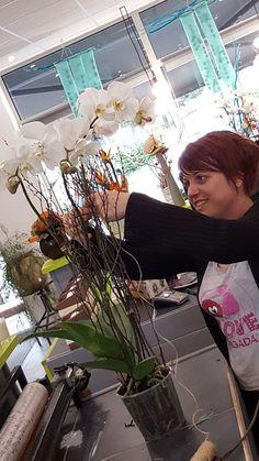 fleuriste franois le chant des fleurs