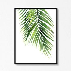 Palm poster. Palm branches. Watercolour plant. Tropical leaves watercolour. Patterned. Green leaf. K