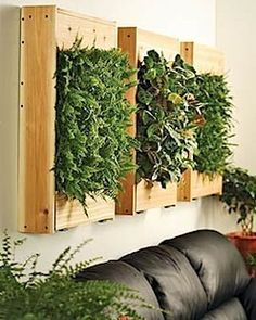 outdoor grow wall | Wall-Hanging Plant Holder. » Curbly | DIY Design Community
