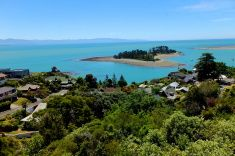 Sandy island and clear blue ocean view from village hill stock photo Nelson New Zealand, Royalty Free Images, Scenery, Ocean, Stock Photos, Island, Water, Pictures, Photography