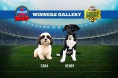 MVP - Puppy Bowl 2015