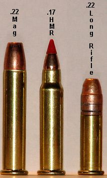 Images about 22 s l lr 22 mag too on pinterest ruger 10 22
