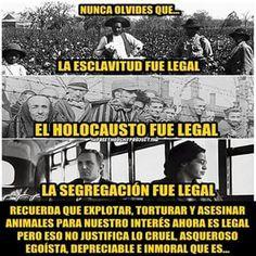 Tauromaquia, abolicion!!!