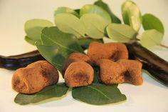 Biscotti al carrubo - Modica, Sicilia  #dolci #italiani #dessert #sweet #italy #italia