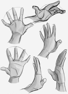 Hand reference with shade Anatomy Sketches, Anatomy Drawing, Anatomy Art, Art Drawings Sketches, Body Drawing, Drawing Base, Manga Drawing, Figure Drawing, Drawing Hands