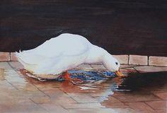 Susan PAYNE - Watercolour Society of WA Inc