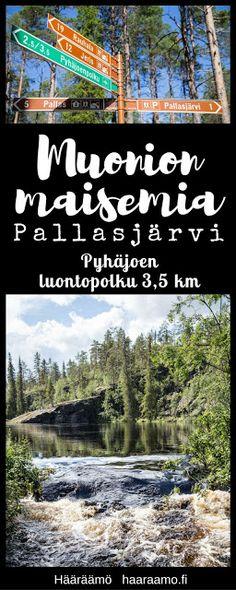 Muonion maisemia: Pyhäjoen luontopolku (3,5 km), Pallasjärvi http://www.haaraamo.fi