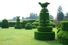 Longwood Gardens. The topiaries are unlike anything I have ever seen. So well crafted and appointed.