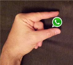 How to use WhatsApp for Business? Find out here!