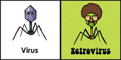 The difference between a virus and a retrovirus: | 20 More Spectacularly Nerdy Science Jokes