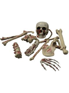 Decoración esqueleto sangriento Halloween: Este lote de decoración incluye 12…