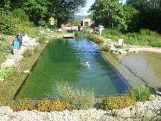 Swimming Pond!