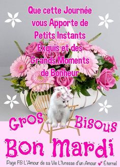 ᐅ 165 Mardi images, photos et illustrations pour facebook - BonnesImages Image Bon Mardi, Good Day Quotes, Morning Quotes, Tu Me Manques, Happy Friendship Day, Bon Weekend, Morning Wish, Friday Morning, Jesus Christ Images