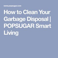 How to Clean Your Garbage Disposal | POPSUGAR Smart Living