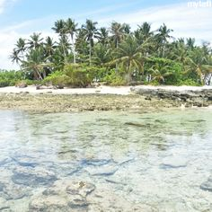 Hidden islands await those who embark on a #TEFL adventure this year. Where will you discover yours? #TEFL #TEFLqual #EFLteachers #teachTEFL #TESOLteachers #TESOLlife #getoutthere #explore #dontmissAsia #Asialife #Asiandestinations #TEFLdestinations #tropics #Philippines #Thailand #CostaRica #SouthAmerica #beach #beachlife #explorers #travelblog #travelblogger #travellife #travelingfolk Tefl Certification, Teaching English, South America, Philippines, Islands, Thailand, Explore, Adventure, Beach