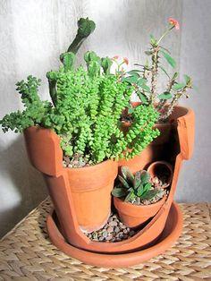 Como transformar quatro vasos num jardim | Vila do Artesão