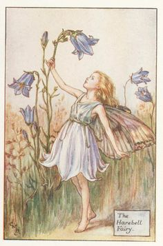 Flower Fairies: THE HAREBELL FAIRY Vintage Print c1930 by Cicely Mary Barker