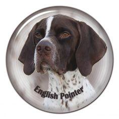 English pointer 3D sticker - #englishpointer #pointer