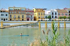 We see Triana district, Betis street - Se ve Triana, la calle Betis - We see : La Tertulia is a bar / cafe is ideally located in the Betis street from where one can see the Giralda, the Maestranza and the Isabel II Bridge - Picture taken from Paseo Cristóbal Colón, Sevilla