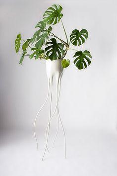 Reminiscent of Salvador Dali's elephants, these leggy flower pots were created by the Dutch designer Tim van de Weerd.