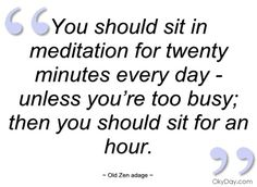 """""""You should sit in meditation for twenty minutes everyday - unless you're too busy; then you should sit for an hour.""""."""