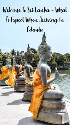 Welcome To Sri Lanka – What To Expect When Arriving In Colombo