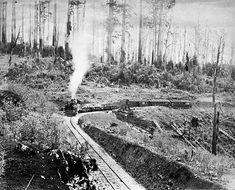 1890's photos | transpress nz: narrow gauge steam in Victoria, Australia, 1900s